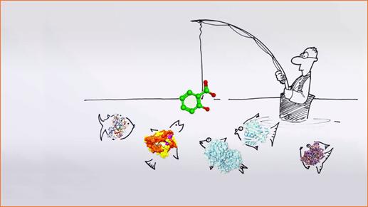 раціональний дизайн ліків ярмолюк сергій