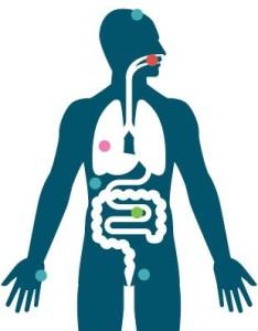 здоровье человека
