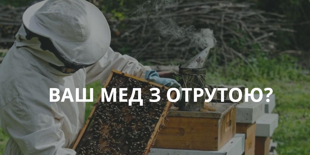мед с ядом анализ меда