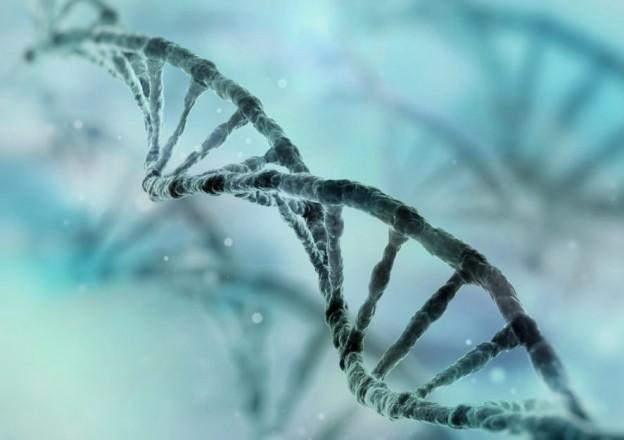 ДНК-аналіз